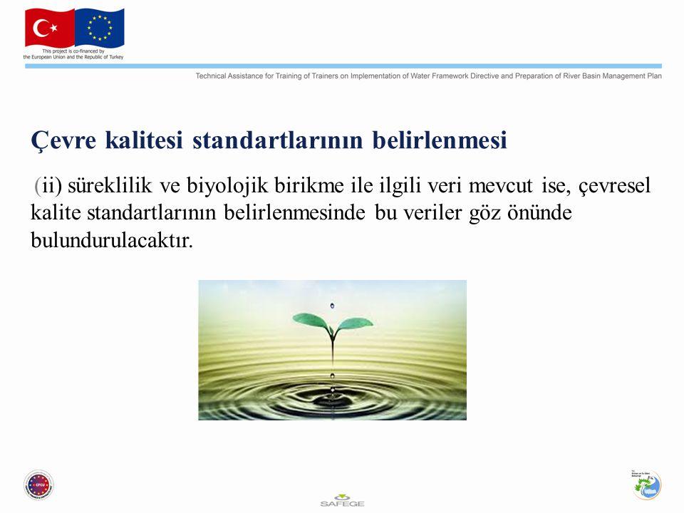 Çevre kalitesi standartlarının belirlenmesi