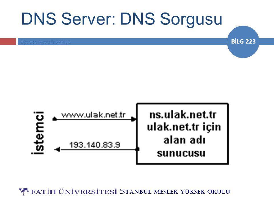 DNS Server: DNS Sorgusu