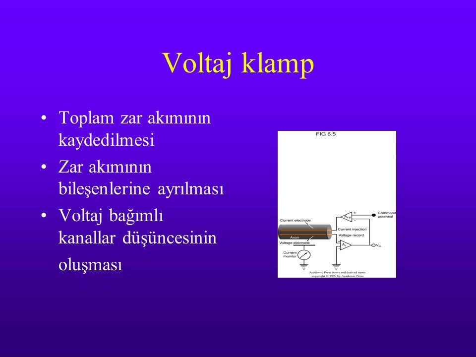 Voltaj klamp Toplam zar akımının kaydedilmesi