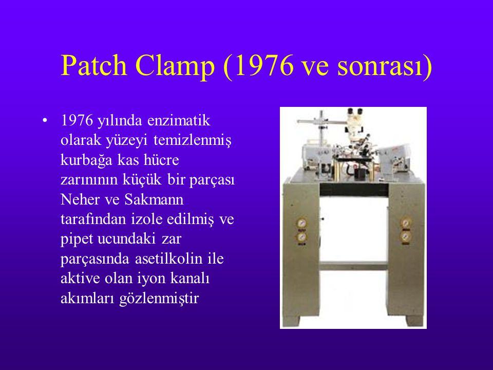 Patch Clamp (1976 ve sonrası)