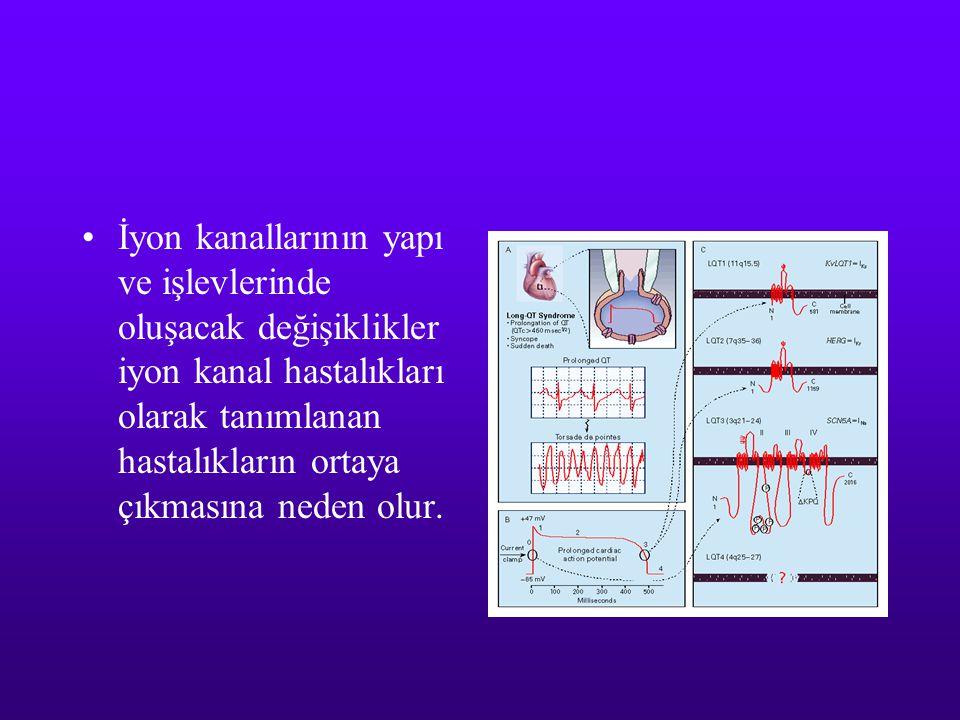 İyon kanallarının yapı ve işlevlerinde oluşacak değişiklikler iyon kanal hastalıkları olarak tanımlanan hastalıkların ortaya çıkmasına neden olur.