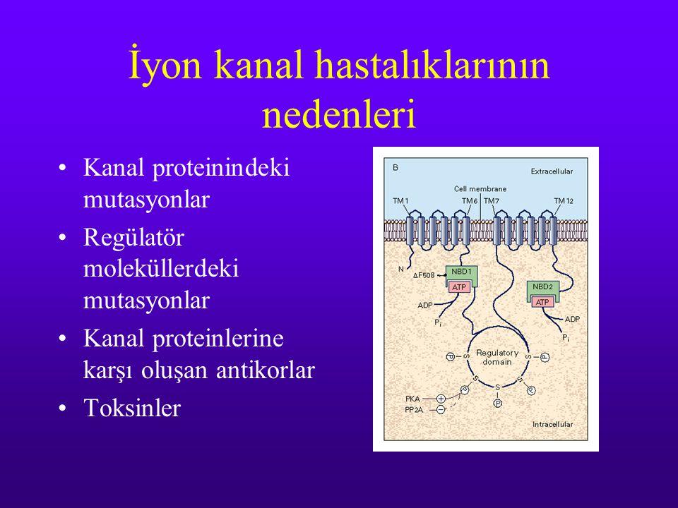 İyon kanal hastalıklarının nedenleri