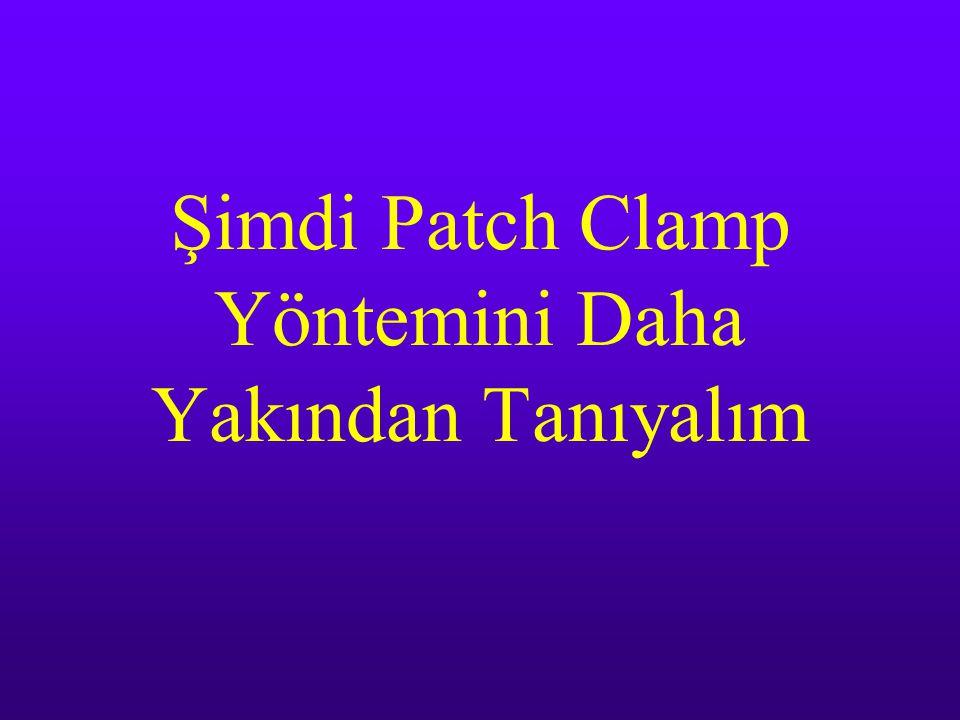 Şimdi Patch Clamp Yöntemini Daha Yakından Tanıyalım