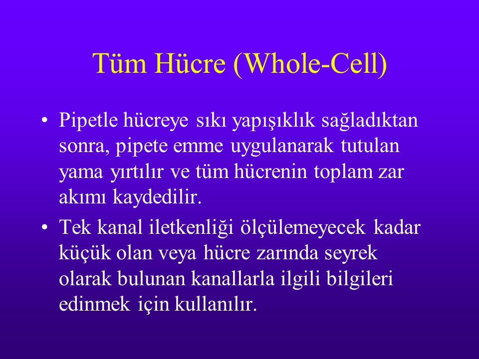 Tüm Hücre (Whole-Cell)