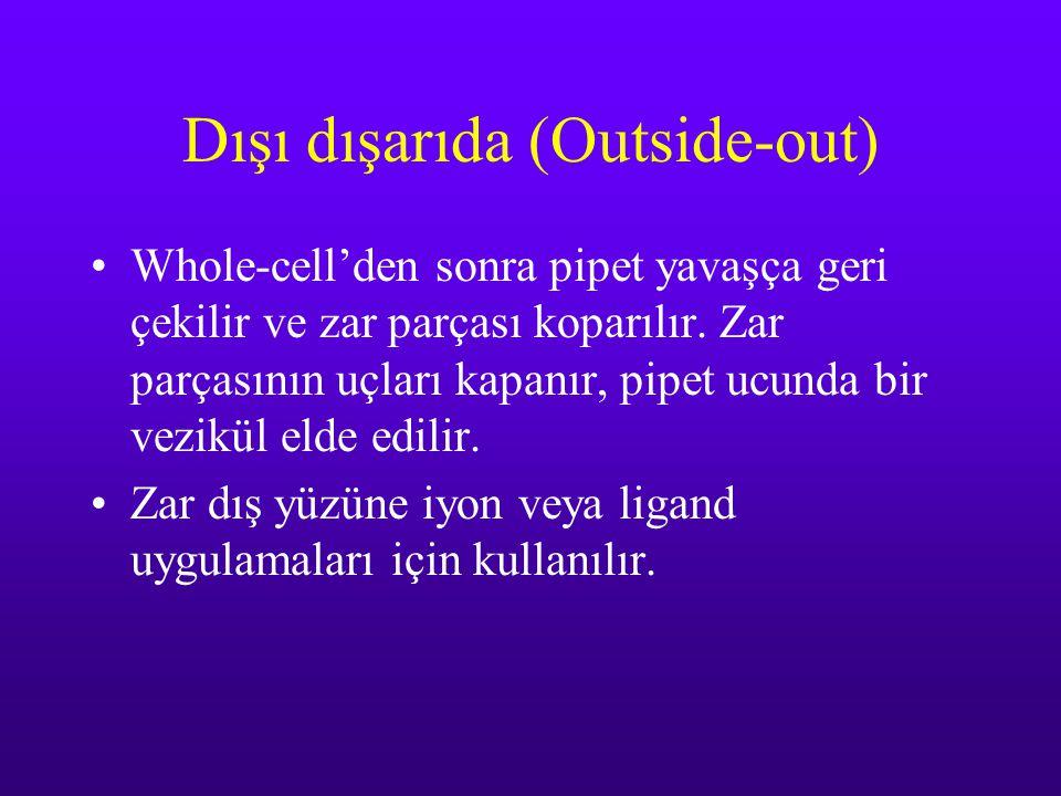 Dışı dışarıda (Outside-out)