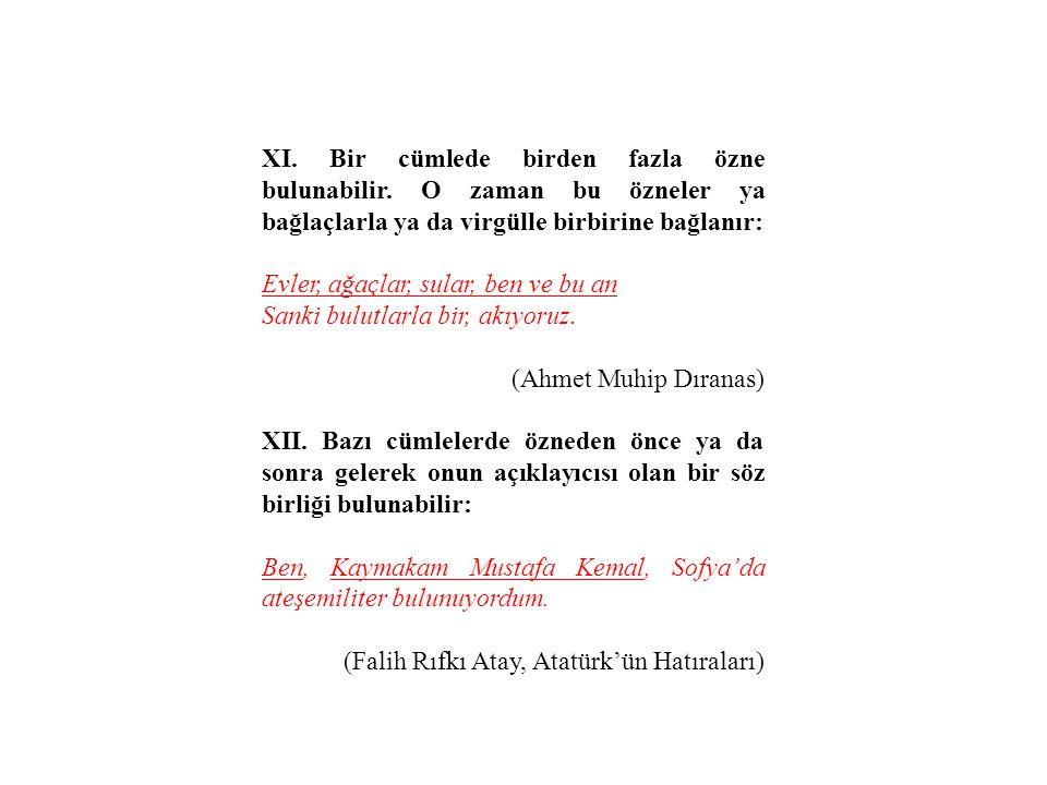 XI. Bir cümlede birden fazla özne bulunabilir