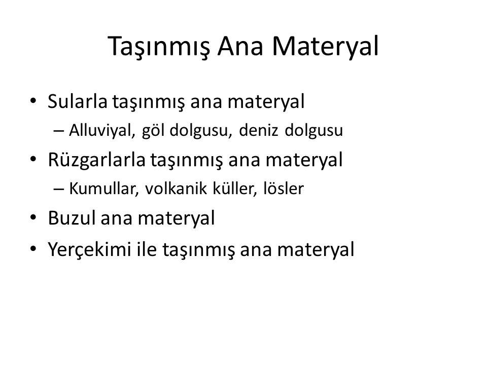 Taşınmış Ana Materyal Sularla taşınmış ana materyal