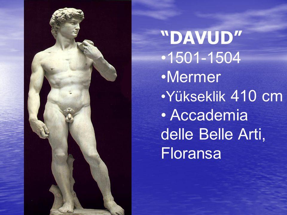 DAVUD 1501-1504 Mermer Accademia delle Belle Arti, Floransa