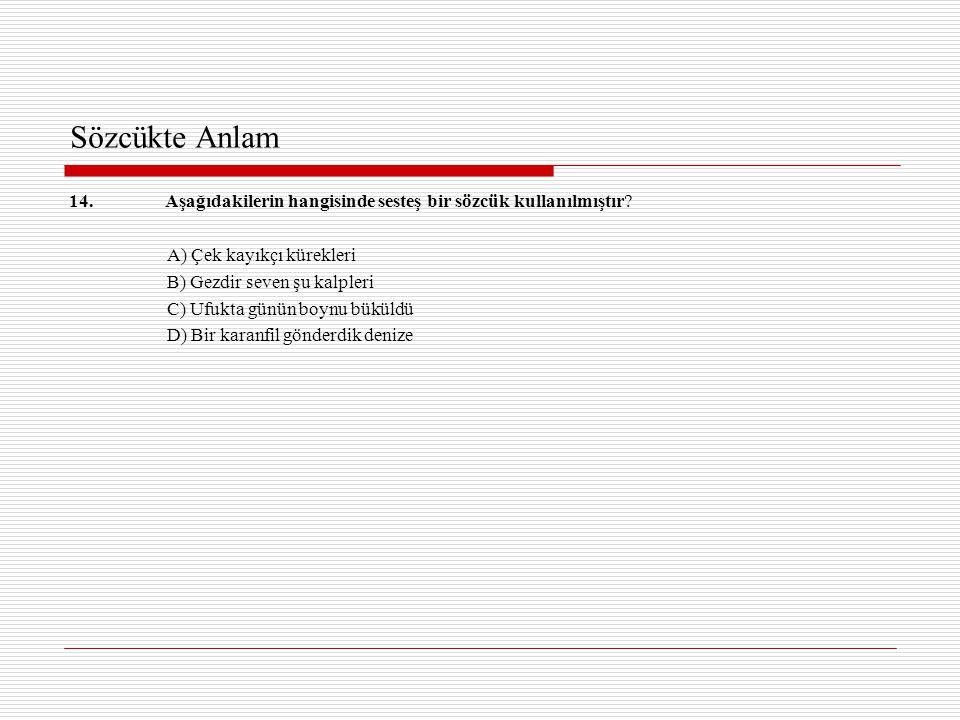 Sözcükte Anlam 14. Aşağıdakilerin hangisinde sesteş bir sözcük kullanılmıştır A) Çek kayıkçı kürekleri.