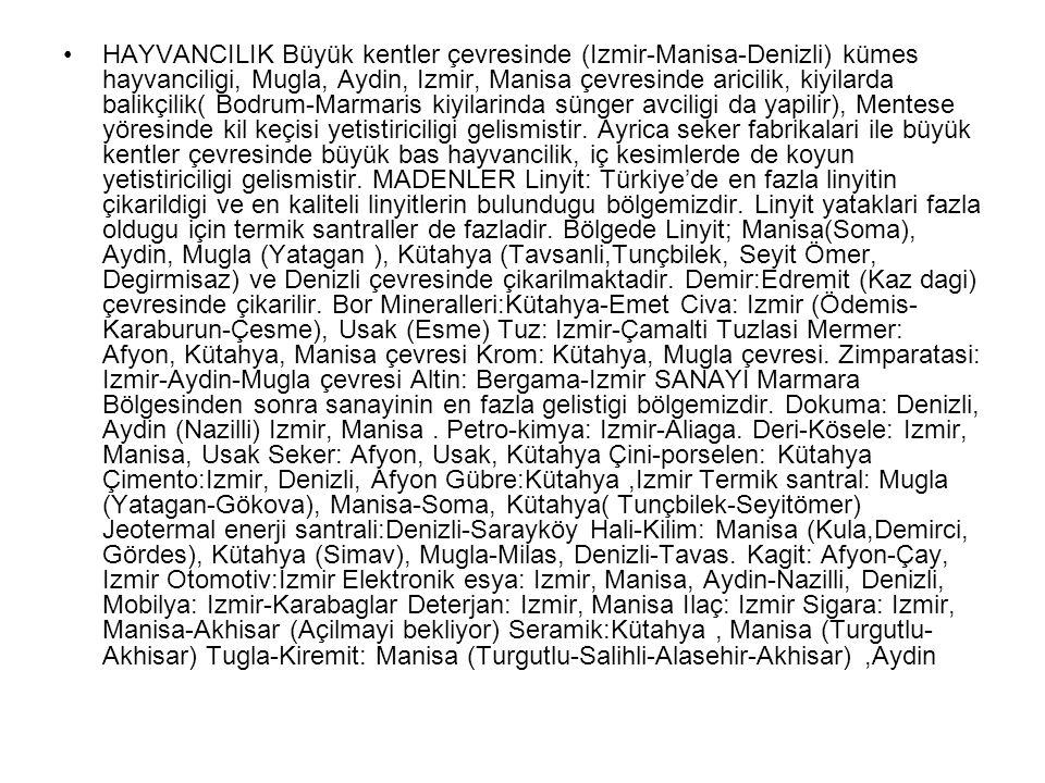 HAYVANCILIK Büyük kentler çevresinde (Izmir-Manisa-Denizli) kümes hayvanciligi, Mugla, Aydin, Izmir, Manisa çevresinde aricilik, kiyilarda balikçilik( Bodrum-Marmaris kiyilarinda sünger avciligi da yapilir), Mentese yöresinde kil keçisi yetistiriciligi gelismistir.