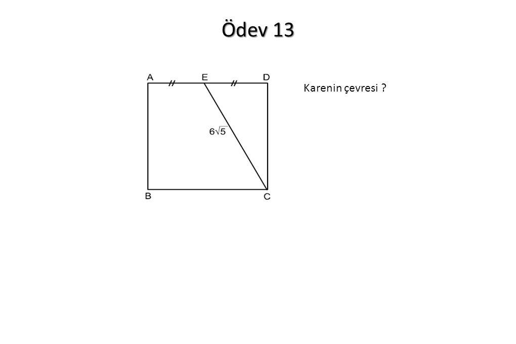 Ödev 13 Karenin çevresi
