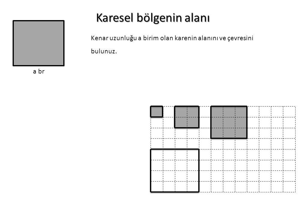 Karesel bölgenin alanı