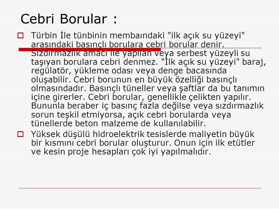 Cebri Borular :