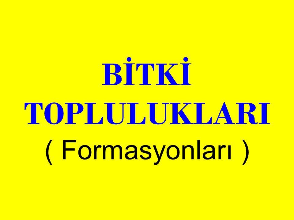 BİTKİ TOPLULUKLARI ( Formasyonları )