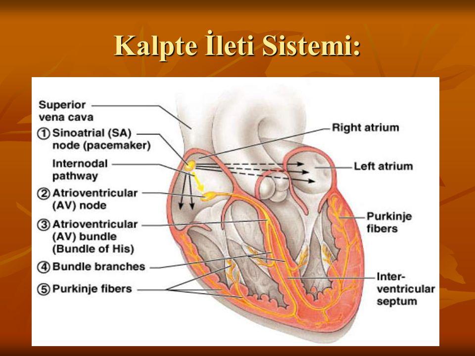 Kalpte İleti Sistemi: