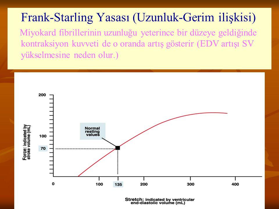 Frank-Starling Yasası (Uzunluk-Gerim ilişkisi)
