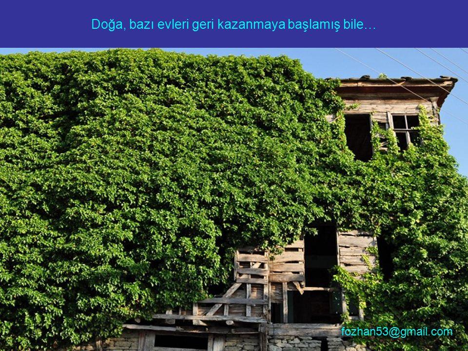 Doğa, bazı evleri geri kazanmaya başlamış bile…