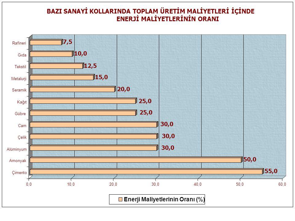 BAZI SANAYİ KOLLARINDA TOPLAM ÜRETİM MALİYETLERİ İÇİNDE