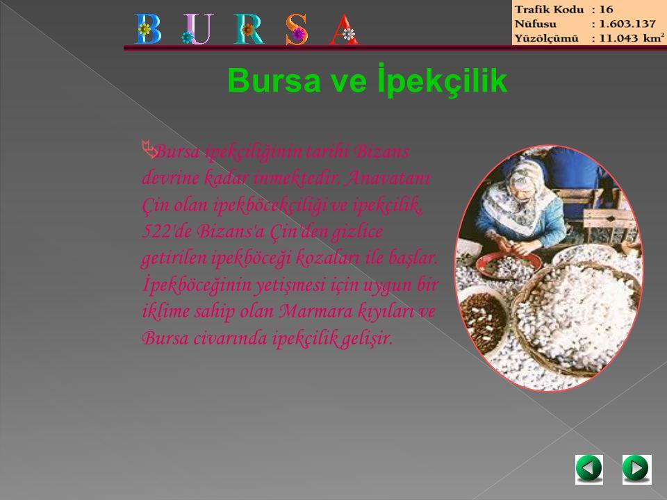 Bursa ve İpekçilik