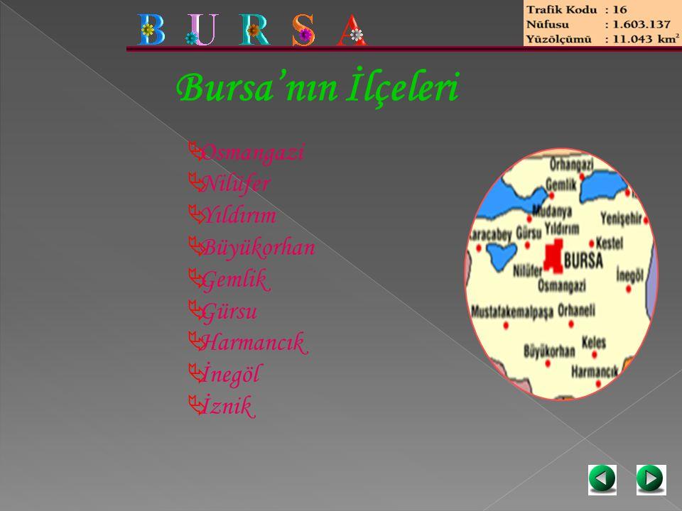 Bursa'nın İlçeleri Osmangazi Nilüfer Yıldırım Büyükorhan Gemlik Gürsu