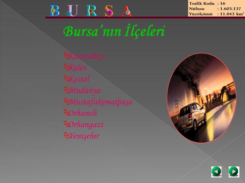 Bursa'nın İlçeleri Karacabey Keles Kestel Mudanya Mustafakemalpaşa