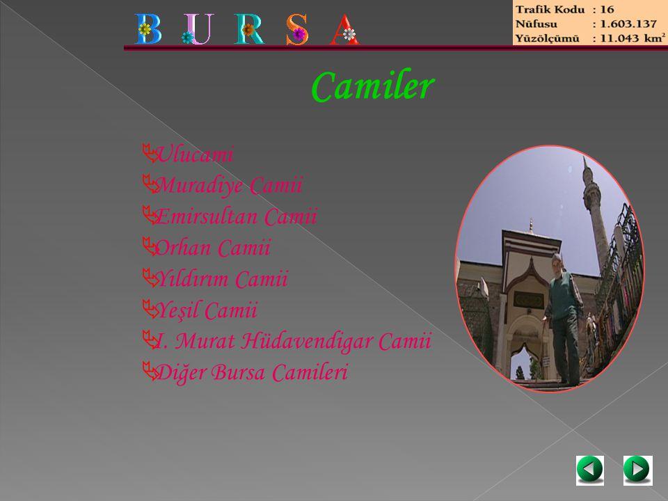 Camiler Ulucami Muradiye Camii Emirsultan Camii Orhan Camii