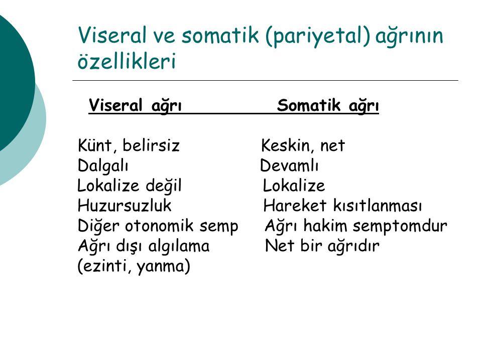 Viseral ve somatik (pariyetal) ağrının özellikleri