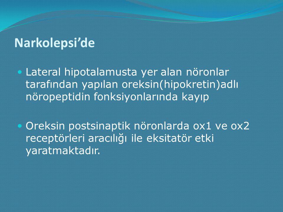 Narkolepsi'de Lateral hipotalamusta yer alan nöronlar tarafından yapılan oreksin(hipokretin)adlı nöropeptidin fonksiyonlarında kayıp.