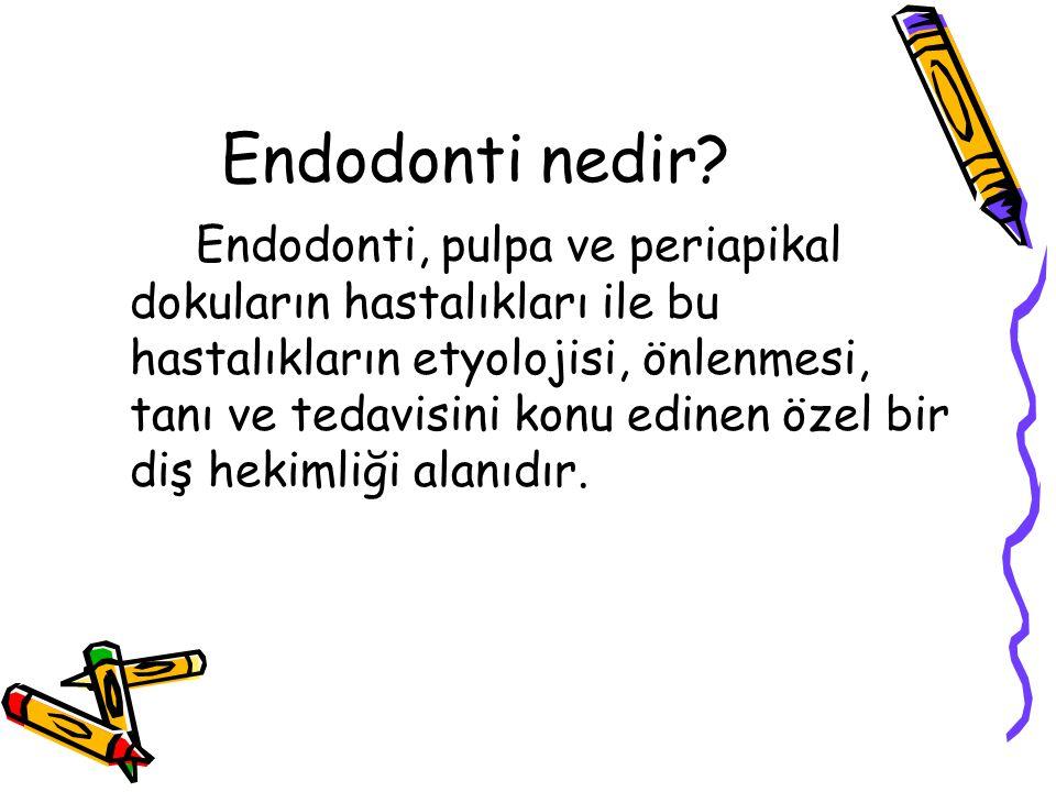 Endodonti nedir