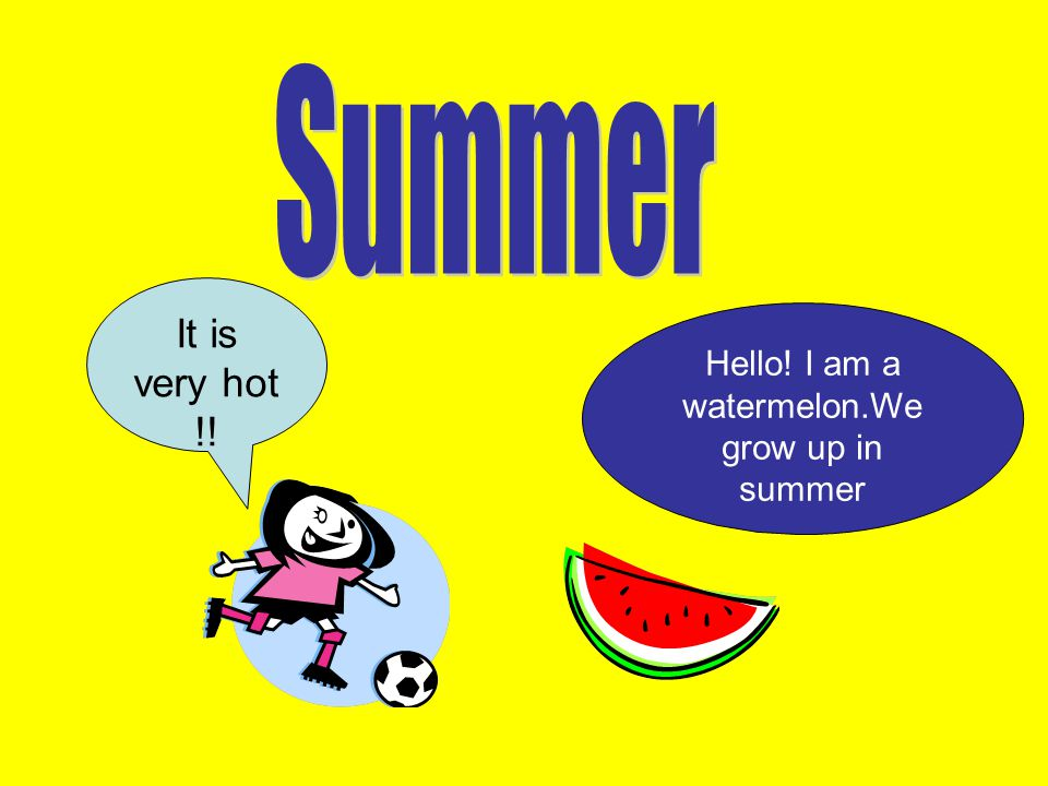Hello! I am a watermelon.We grow up in summer