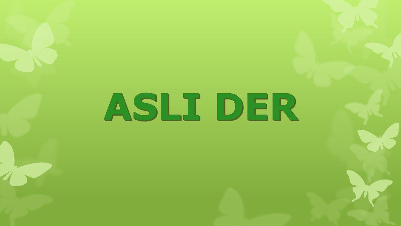ASLI DER
