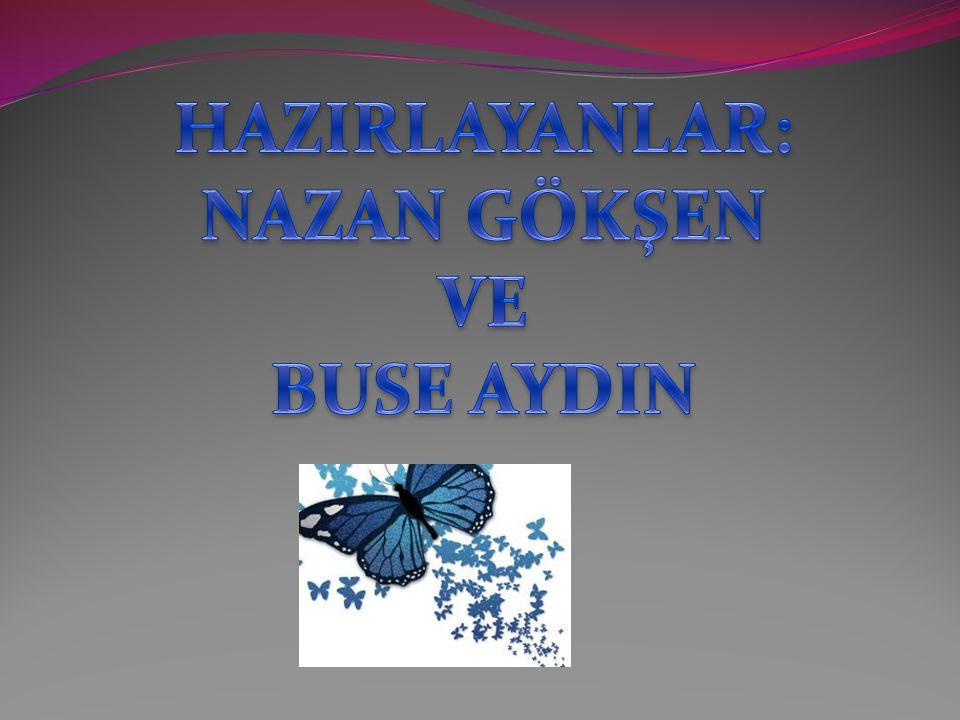 HAZIRLAYANLAR: NAZAN GÖKŞEN VE BUSE AYDIN