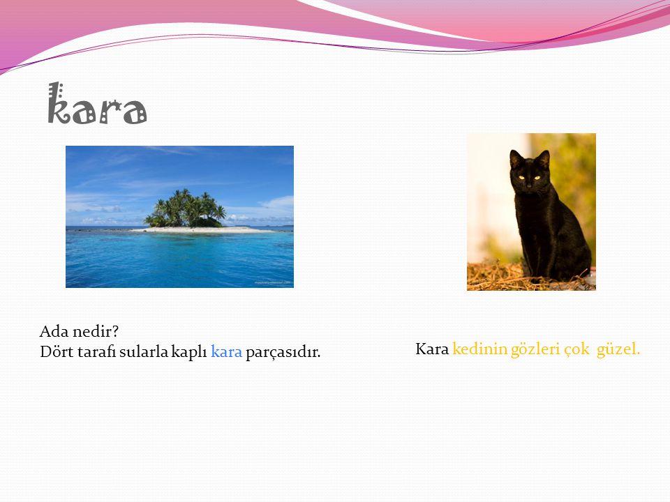 kara Ada nedir Dört tarafı sularla kaplı kara parçasıdır.