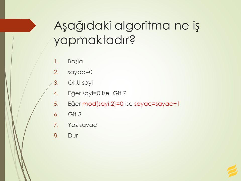 Aşağıdaki algoritma ne iş yapmaktadır