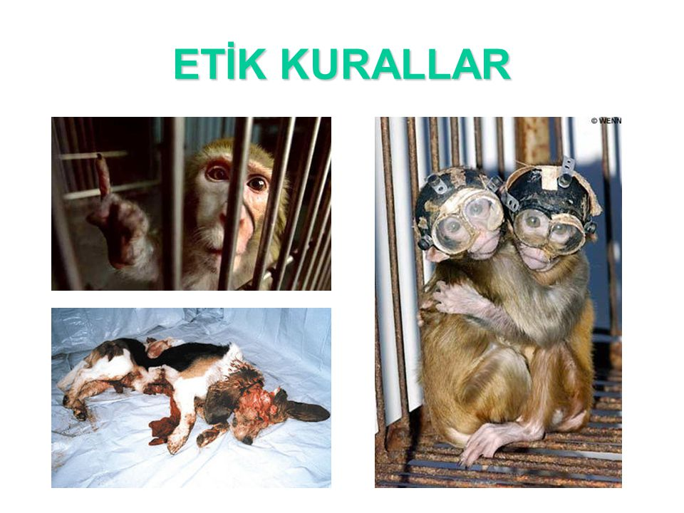 ETİK KURALLAR