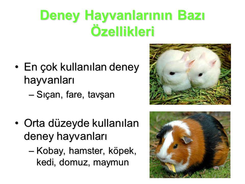 Deney Hayvanlarının Bazı Özellikleri