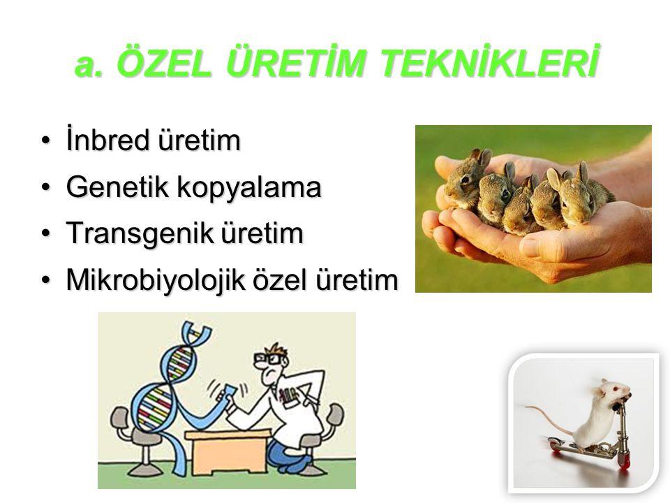 a. ÖZEL ÜRETİM TEKNİKLERİ
