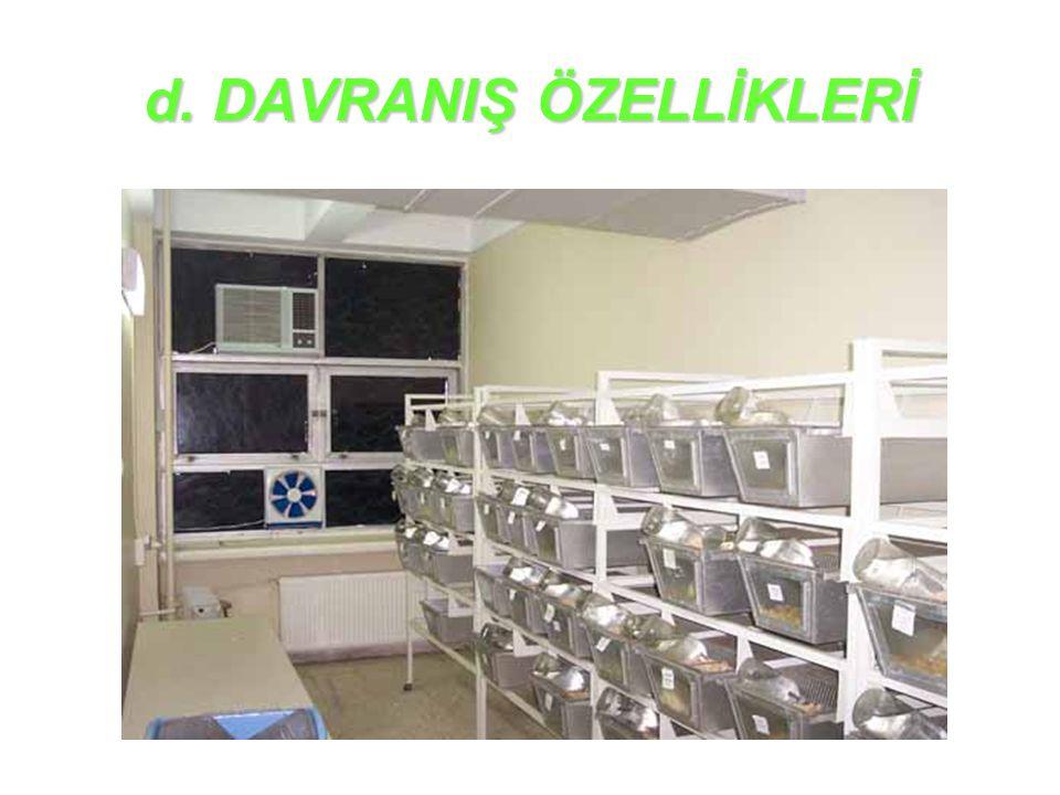 d. DAVRANIŞ ÖZELLİKLERİ