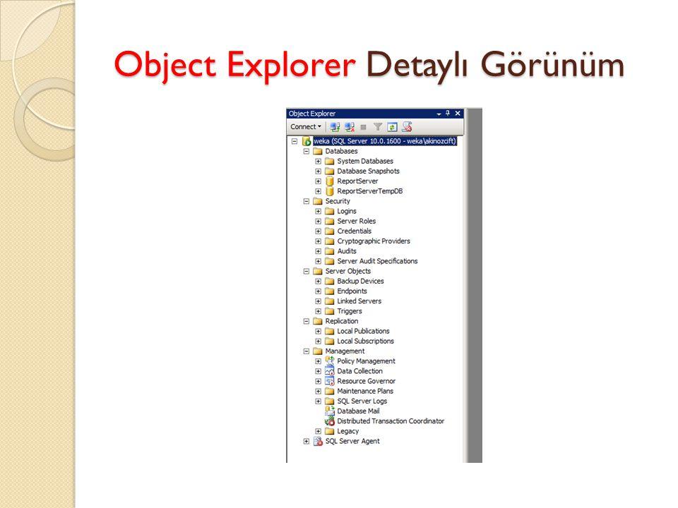 Object Explorer Detaylı Görünüm