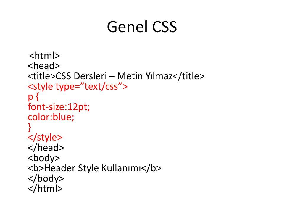 Genel CSS