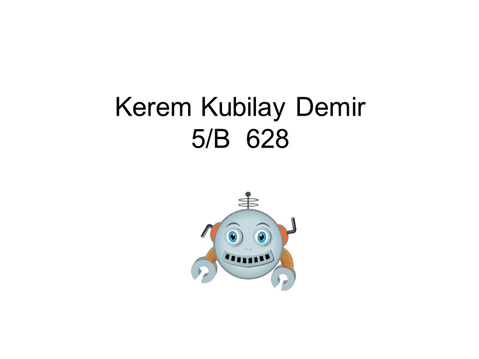 Kerem Kubilay Demir 5/B 628