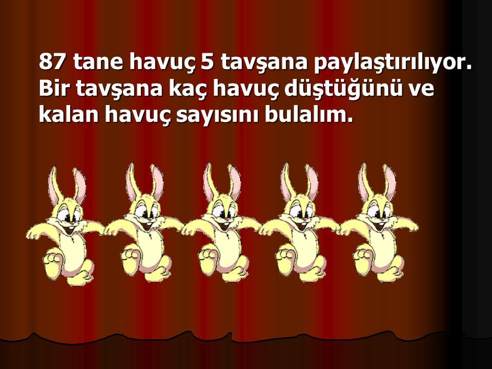 87 tane havuç 5 tavşana paylaştırılıyor