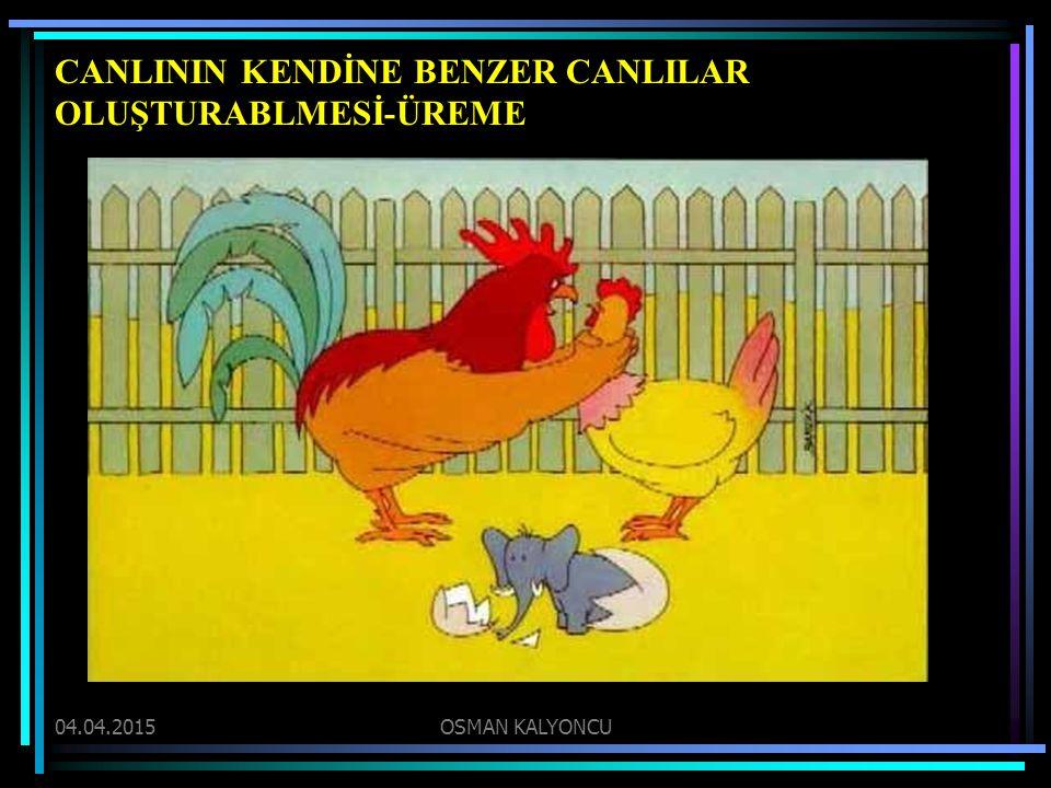 CANLININ KENDİNE BENZER CANLILAR OLUŞTURABLMESİ-ÜREME