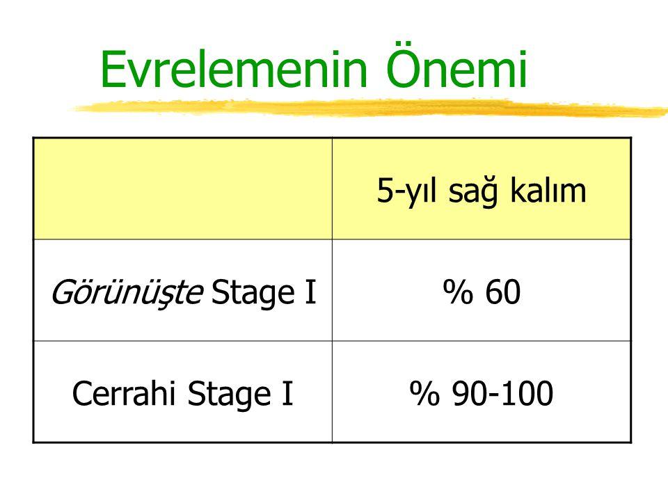 Evrelemenin Önemi 5-yıl sağ kalım Görünüşte Stage I % 60