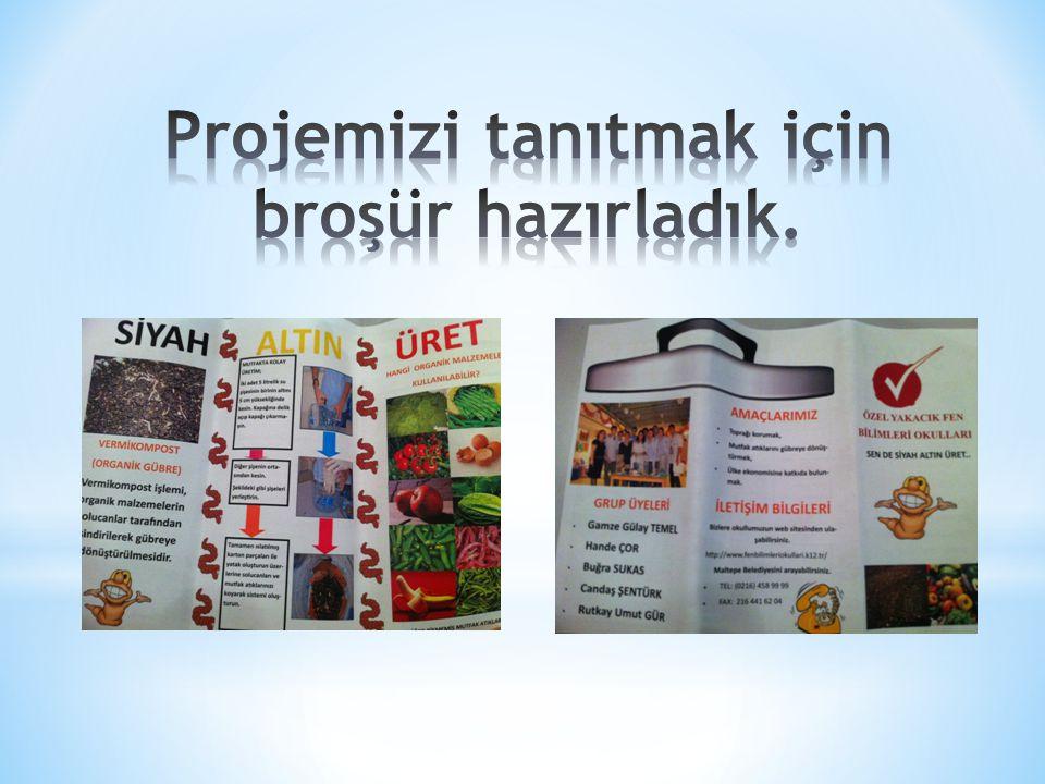 Projemizi tanıtmak için broşür hazırladık.