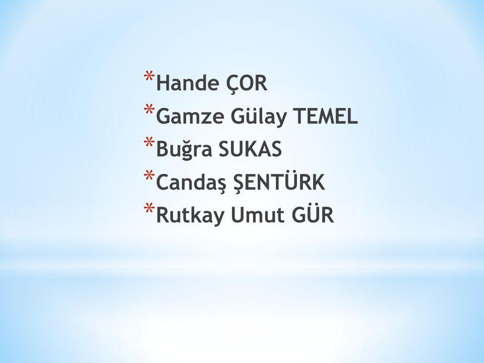 Hande ÇOR Gamze Gülay TEMEL Buğra SUKAS Candaş ŞENTÜRK Rutkay Umut GÜR
