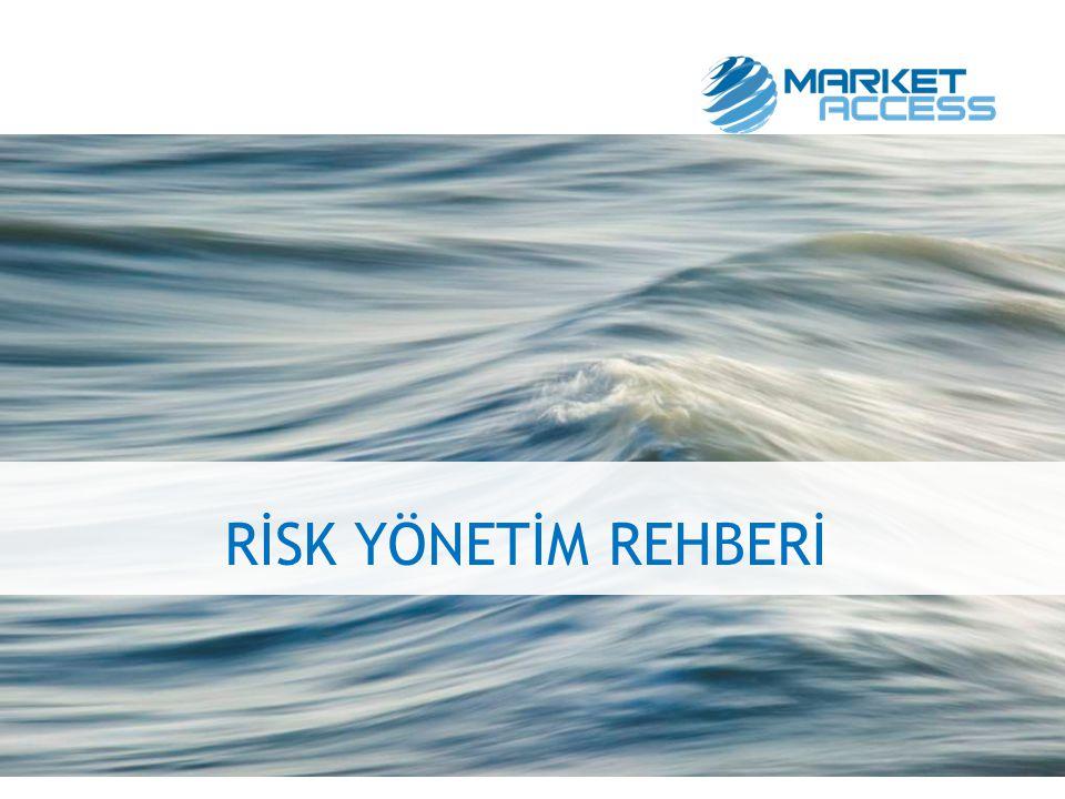 Risk Yönetim Prensipleri