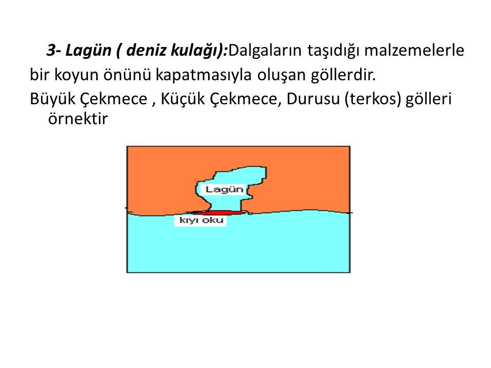 3- Lagün ( deniz kulağı):Dalgaların taşıdığı malzemelerle bir koyun önünü kapatmasıyla oluşan göllerdir.