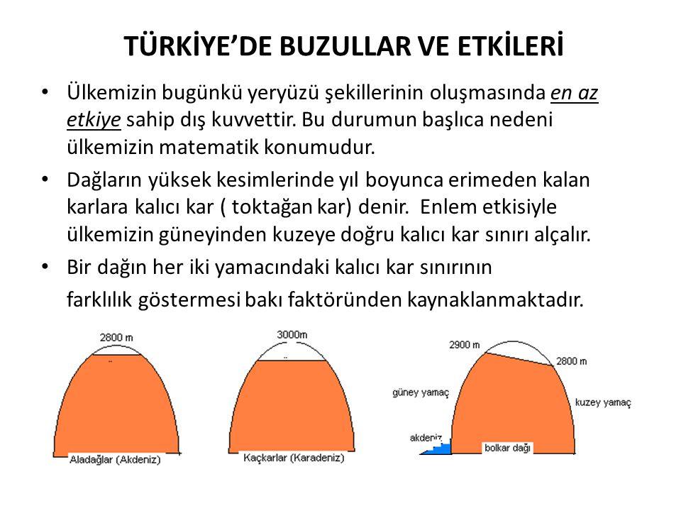 TÜRKİYE'DE BUZULLAR VE ETKİLERİ