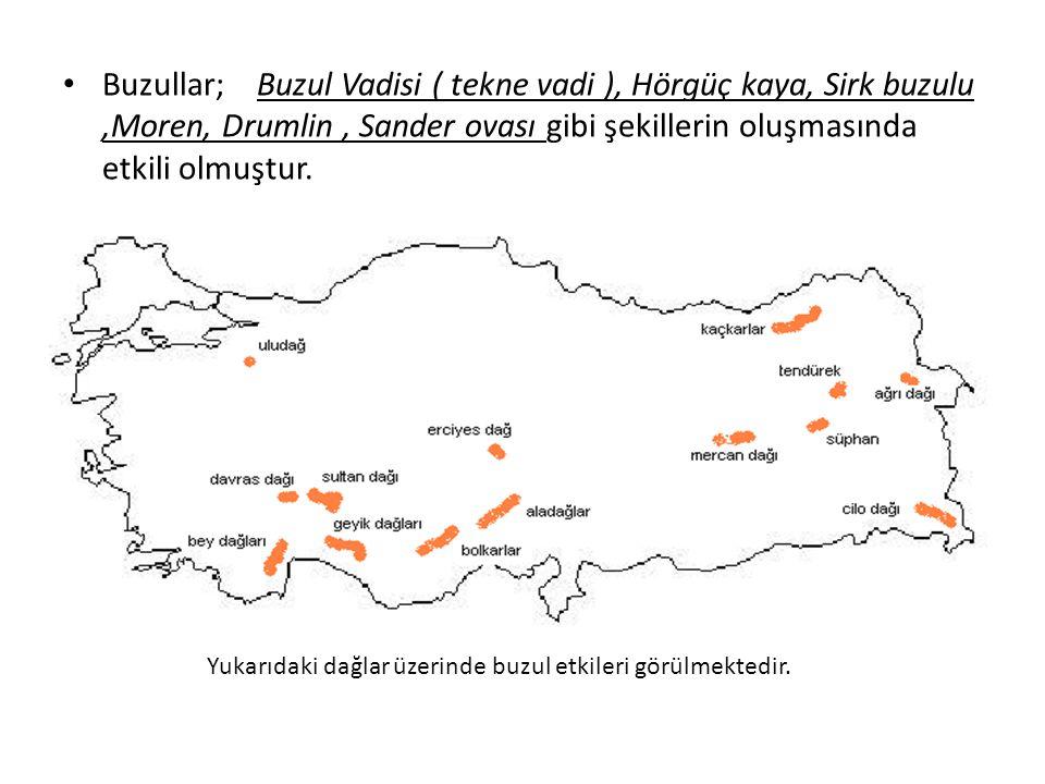 Buzullar; Buzul Vadisi ( tekne vadi ), Hörgüç kaya, Sirk buzulu ,Moren, Drumlin , Sander ovası gibi şekillerin oluşmasında etkili olmuştur.